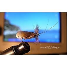 Caddisfly deer hair scin wing