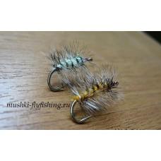 Caterpillar palmer fly