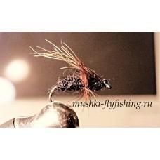 ant fly bear wing