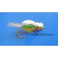 beetle foam (green-white)