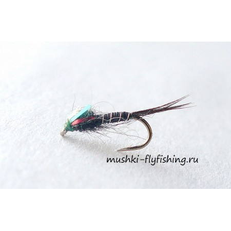 mosquito larva nymph