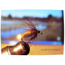 wet fly black hackle