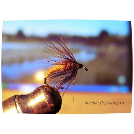 wet fly black hackle